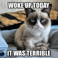 Ups, Grumpy Cat, and Today: WOKE UP TODAY  IT WAS TERRIBLE Seriously, terrible!  Join I Got You Bro