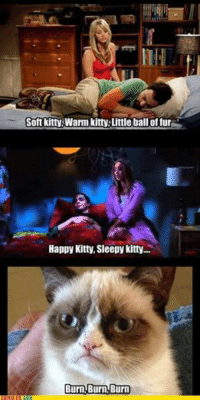 Soft kitty, Warm kitty Little ball of fur  Happy Kitty, Sleepy kitty....  Burn, Burn Burn