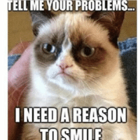 Join Animal Memes. smile emoticon: UELI ME YOUR PROBLEMS.  I NEED A REASON Join Animal Memes. smile emoticon