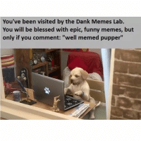 "Well memed pupper: You've been visited by the Dank Memes Lab  You will be blessed with epic, funny memes, but  only if you comment: ""well memed pupper"" Well memed pupper"