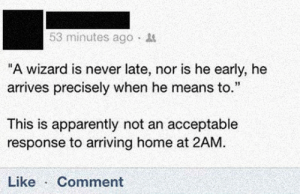 """srsfunny:  Sorry Wizard Guyhttp://srsfunny.tumblr.com/: 53 minutes ago ·  """"A wizard is never late, nor is he early, he  arrives precisely when he means to.""""  This is apparently not an acceptable  response to arriving home at 2AM.  Like  Comment srsfunny:  Sorry Wizard Guyhttp://srsfunny.tumblr.com/"""