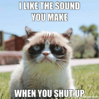 Join Animal Memes. smile emoticon: I LIKE THE SOUND  YOU MAKE  WHEN YOU SHUT UP Join Animal Memes. smile emoticon