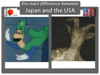 Japan: the main difference between  Japan and the USA  L