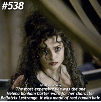 Memes, Hair, and Helena Bonham Carter:  #538  The most MYPOTITERFACTS  was the one  expensive wig Helena Bonham Carter wore for her character  Bellatrix Lestrange. It was made of real human hair. QOTD: What type of hair do you have? 💇🏽 . @forevermaddy_ @hpfashion934