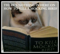 Join Animal Memes. smile emoticon ‪#‎grumpycat‬ ‪#‎lol‬ ‪#‎mockingbird‬: THERE'S NOTHING IN HERE ON  HOW TO KILL A MOCKING BIRD!  TO KILL  MOCK IN  BT RD Join Animal Memes. smile emoticon ‪#‎grumpycat‬ ‪#‎lol‬ ‪#‎mockingbird‬