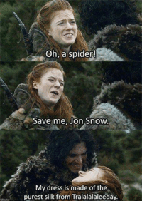 Oh, a spider!  Save me, Jon Snow  My dress is made of the  purest silk from Tralalalaleeday. Oh, Ygritte  Game of Thrones Memes