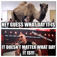 Happy Hump Day: HEY GUESS WHAT DAY IT IS  ou  Co  ITDOESNT MATTER WHAT DAY  IT IS!!! Happy Hump Day