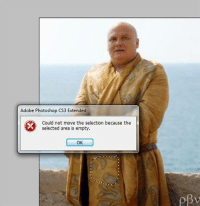 Game of Thrones Memes: Adobe Photoshop CS3 Extended  Could not move the selection because the  selected area is empty.  OK Game of Thrones Memes