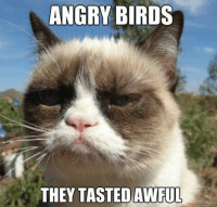 Join Animal Memes. smile emoticon: ANGRY BIRDS  THEY TASTED AWFUL  quick meme com Join Animal Memes. smile emoticon