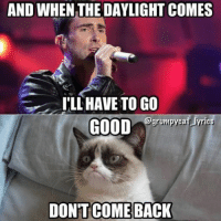 Grumpy Cat, Good, and Lyrics: AND WHEN THE DAYLIGHT COMES  ILL HAVE TO GO  grumpycat lyrics  GOOD  DONT COMEBACK