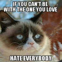 Hate Meme: IF YOU CAN'T BE  WITH THE ONE YOU LOVE  HATE EVERYBODY  rtgra