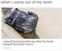 i feel bad for stealing memes but main admin said to steal more and share less so be gent my djent boys: when i come out of my room  A Bag of Trash Started Moving. What Was Inside  Changed This Family Forever.  DIPLY COM i feel bad for stealing memes but main admin said to steal more and share less so be gent my djent boys