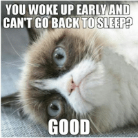 Cats, Ups, and Grumpy Cat: YOU WOKE UP EARLY AND  CANT GO BACK TO SLEEP  GOOD Join Grumpy Cat. smile emoticon