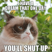 A Dream, Cats, and Shut Up: HAVEA  DREAM THAT ONE DAY  YOU SHUT UP I have a dream..... Grumpy Cat. smile emoticon