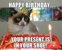 HAPPY BIRTHDAY  YOUR PRESENT IS  YOUR SHOE!  02013 Grump Cat HAPPY BIRTHDAY!