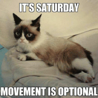 Cats, Grumpy Cat, and Smile: ITS SATURDAY  MOVEMENT IS OPTIONAL Join Grumpy Cat. smile emoticon