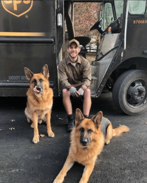 ups-dogs:Here we have two of my favorite fur friends, Bear and Seeka out in Waterford,VA. They are always excited and joyful to hangout with their friendly neighborhood UPS driver. And of course the treats! Dylan Robinson: 570193  USDOT 021 ups-dogs:Here we have two of my favorite fur friends, Bear and Seeka out in Waterford,VA. They are always excited and joyful to hangout with their friendly neighborhood UPS driver. And of course the treats! Dylan Robinson