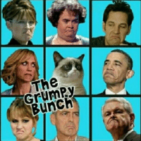 Cats, Grumpy Cat, and Smile: 13  THe  GrumPy  Bunch Join Grumpy Cat. smile emoticon