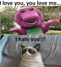 Cats, Love, and Grumpy Cat: love you, you love me...  I hate you!!! Join Grumpy Cat. smile emoticon