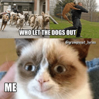 Cats, Dogs, and Grumpy Cat: WHOLET THE DOGS OUT  @grumpy cat lyrics  ME Join Grumpy Cat. smile emoticon