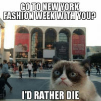 Cats, Fashion, and New York: GO TO NEW YORK  FASHION  WEEK WITH YOU  ID RATHER DIE Join Grumpy Cat. smile emoticon