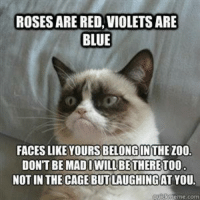 Cats, Grumpy Cat, and Blue: IROSES ARE RED, VIOLETS ARE  BLUE  FACES LIKE YOURSIBELONGINTHEZOO.  DON'T BE BE THERE  NOT IN THE CAGE BUTLAUGHINGAT YOU.  guickmeme com Join Grumpy Cat. smile emoticon