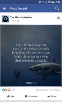 I guess we are all monsters: 58% 17:44  Most Recent  The Mind Unleashed  7 hrs  B  This is the most dangerous  animal in the world, responsible  for millions of deaths every year  By his side, we can see a white  shark swimming peacefully  THE  UNLEASHED  UNCOVER YOUR TRUE POTENTIAL  96 comments 1.4K shares  Like  Share  Comment I guess we are all monsters