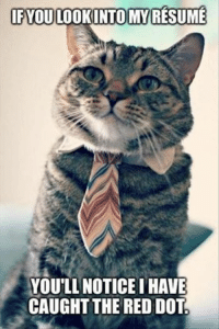 Join Animal Memes. for more funny pictures like this! grin emoticon: IF YOU LOOKINTO MY RESUME  YOULL NOTICEIHAVE  CAUGHT THE RED DOT Join Animal Memes. for more funny pictures like this! grin emoticon