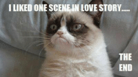 Cats, Love, and Grumpy Cat: I LIKED ONE SCENE IN LOVE STORY.....  THE  END Join Grumpy Cat. smile emoticon