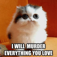 Join Animal Memes. smile emoticon: WILL MURDER  EVERYTHING YOULOVE Join Animal Memes. smile emoticon
