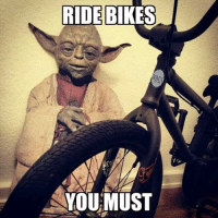 Wise words from Yoda! ~YaBoyWalte`: RIDE RIDE BIKES  YOU MUST Wise words from Yoda! ~YaBoyWalte`