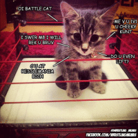 NOI BATTLE CAT  I SWERM8 I WILL  REKUBRUV  CUAT  RESSLEMANIA  BIRCH  ME VU1V1  UU CHEEKY  KUNT  DO UEVEN  LIFT?  AWRESTLING MEMES  FACEBOON.COMVWRESTLINGMEMES Don't mess with Battle Kitty