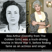 dorothy: 59  Bea Arthur (Dorothy from The  Golden Girls) was a truck-driving  Marine in World War ll, before finding  fame as an actress and singer.  weird-facts.org  @factsweird