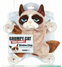 Cats, Disney, and Meme: THINK CAT  GRU  GRUMPY  Window Cling  or home.  GANZ Who wants one!? Disney Memes