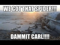 Say no to camel spiders: WE GOT THAT SPIDER  DAMMIT CARL!!!! Say no to camel spiders