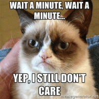 Meme, Memes, and Grumpy Cat: WAIT A MINUTE,  WAIT A  MINUTE...  YEP, I STILL DONT  CARE  meme generator et