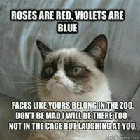 Lol, Grumpy Cat, and Blue: ROSES ARE RED,VIOLETS ARE  BLUE  FACES LIKE YOURS BELONG INTHEZOO  DON'T BE MAD I WILL BETHERETOO  NOT IN THE CAGE BUTLAUGHINGAT YOU.  guickneme com Lol grin emoticon