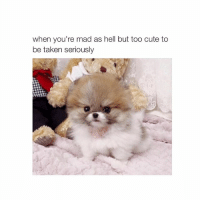 me: when you're mad as hell but too cute to  be taken seriously me
