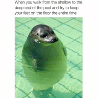Funny, Guess, and Pool: When you walk from the shallow to the  deep end of the pool and try to  keep  your feet on the floor the entire time Guess I'm not the only one (@justforlaughs_mtl)