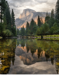 Memes, Nick, and 🤖: : 5i Calmness of Merced River, Yosemite Valley Photo by Nick Smith