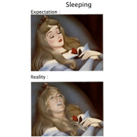 Just a quick little Saturday nap.: Expectation  Reality  Sleeping Just a quick little Saturday nap.