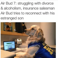 air: Air Bud 7: struggling with divorce  & alcoholism, insurance salesman  Air Bud tries to reconnect with his  estranged son  MISCONDUCT