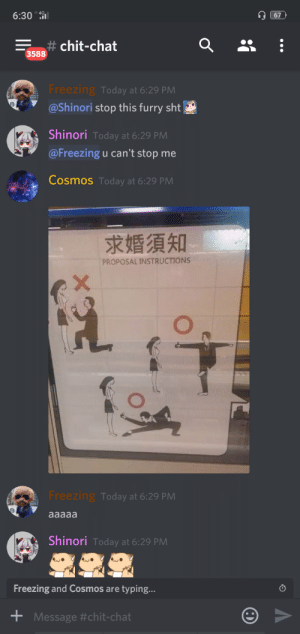 Smh, Chat, and Today: 6:30 0  67  chit-chat  3588  Freezing Today at 6:29 PM  @Shinori stop this furry sht  Shinori Today at 6:29 PM  @Freezing u can't stop me  Cosmos Today at 6:29 PM  求婚須知  PROPOSAL INSTRUCTIONS  X  Freezing Today at 6:29 PM  aaaaa  Shinori Today at 6:29 PM  Freezing and Cosmos are typing...  Message Why nobody has every done this. SMH