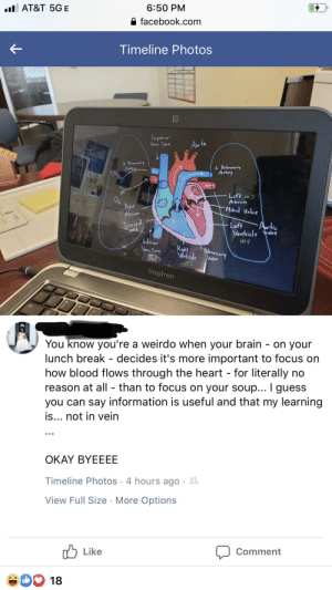 With a hint of r/iamverysmart: 6:50 PM  l AT&T 5GE  facebook.com  Timeline Photos  Superior  Venn Cava  Aor ta  L Pulmonary  Ardery  RRlmonary  Artry  CO  Left #3  Vein=townas  Atrivn  Mitral Valve  Ryht  Atnum  Tewsprd  Valve  Left  Ventride ave  #4  Inferior  Vena Cava  Ruht  Ventride  Polnamary  Vave  #2  inspiron  Esc  F3g  F6  Tab  You know you're a weirdo when your brain - on your  lunch break - decides it's more important to focus on  how blood flows through the heart for literally no  reason at all - than to focus on your soup... I guess  you can say information is useful and that my learning  is... not in vein  OKAY BYEEEE  Timeline Photos 4 hours ago  View Full Size More Options  Comment  Like  O 18 With a hint of r/iamverysmart