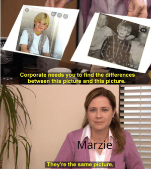 Apparently marzie thinks Pewds looks like David Gallagher when he was a 9 year old.: 6/9  17:30 /  17:30  Corporate needs you to find the differences  between this picture and this picture.  Marzie  They're the same picture. Apparently marzie thinks Pewds looks like David Gallagher when he was a 9 year old.