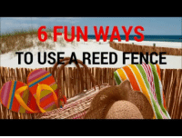 """Meme, Tumblr, and Hunting: 6 FUN WAYS  TO USE A REED FENCE <p><a class=""""tumblr_blog"""" href=""""http://meme-mage.tumblr.com/post/143239514688"""">meme-mage</a>:</p> <blockquote> <p><b>  6 Fun Ways To Use A Natural Reed Fence  </b><br/></p> <p>  6 fun ways to use a natural reed fence: in a garden, a farm, the beach, as tropical decor, a duck hunting blind, or to decorate at a hawaiian luau.<br/>Why use a reed fence? Because they are lightweight, rolls up easily, bound with rust resistant wire, and installation is a snap!  <br/></p> </blockquote>"""