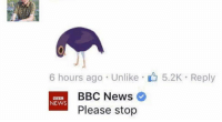 Please: 6 hours ago Unlike 5.2K Reply  BBC News  NEWS  Please stop Please