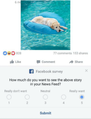 https://t.co/DetLDTn0JW: 6 mi  828  77 comments 153 shares  Like  Comment  Share  Facebook survey  How much do you want to see the above story  in your News Feed?  Really want  Really don't want  Neutral  2  4  1  3  Submit https://t.co/DetLDTn0JW