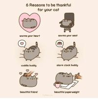 I don't think I can count how many ways I am grateful for my cat :-) <3 Pusheen: 6 Reasons to be thankful  for your cat  warms your seat  warms your heart  alarm clock buddy  cuddle buddy  beautiful friend  beautiful paperweight  Puuheen com I don't think I can count how many ways I am grateful for my cat :-) <3 Pusheen