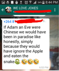 Love Jokes: 6 t .11 34% 8:44 PM  WE LOVE JOKES  +264 8  If Adam an Eve were  Chinese we would have  been in paradise like  honestly, simply  because they would  have ignore the Apple  and eaten the  snake  6:53 PM